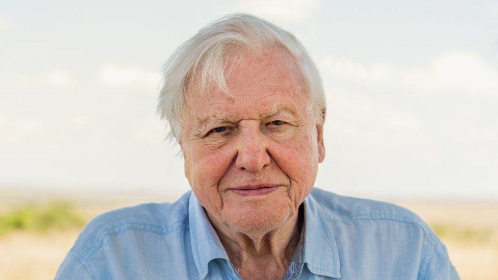 95 éves lett David Attenborough, a dokumentumfilmek királya